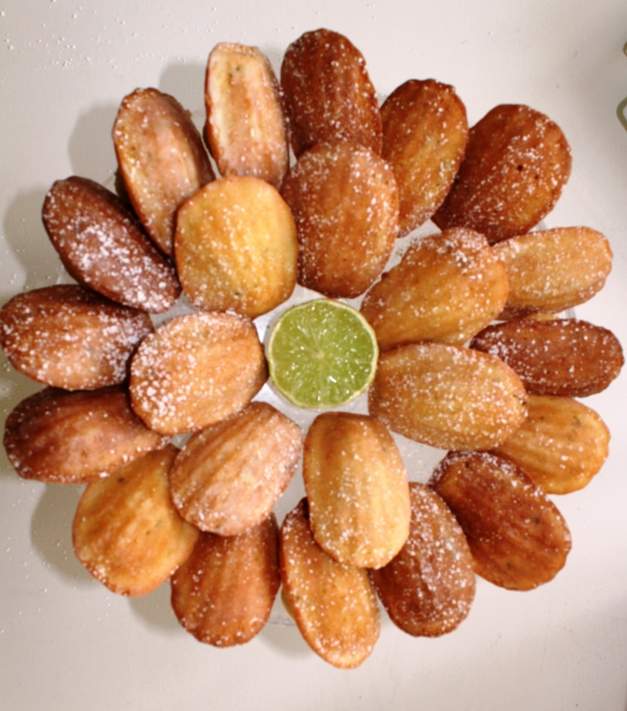 cocnut and limes madelelines 2
