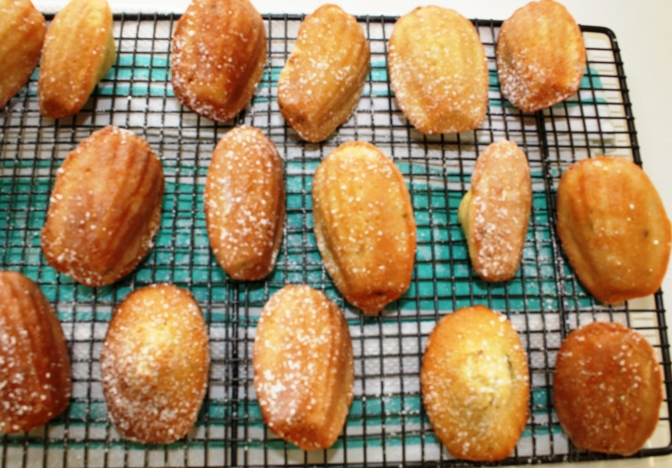 Rack of lime and coconut madeleines